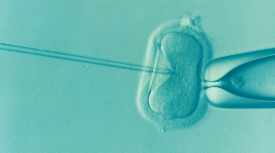 Improving Access to Safe Fertility Treatments